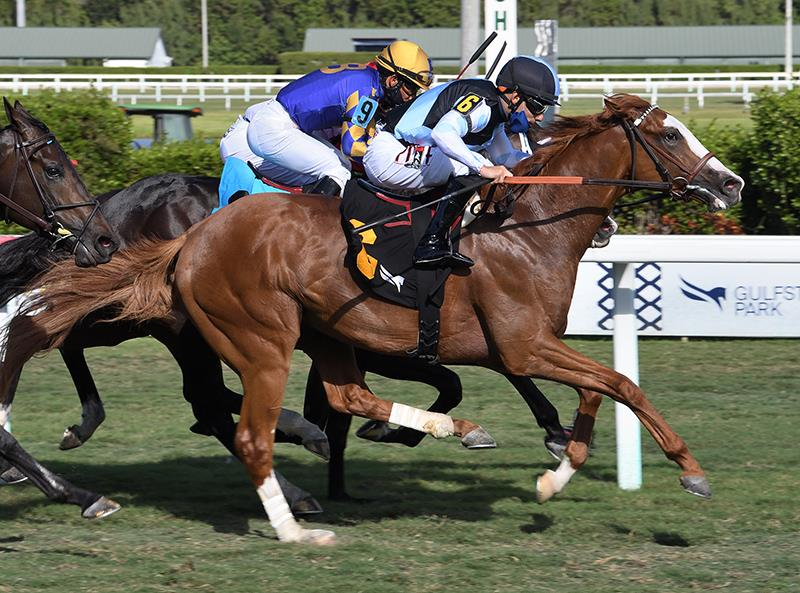 Undefeated Annex wins $100,000 Cutler Bay S. with driving finish title=