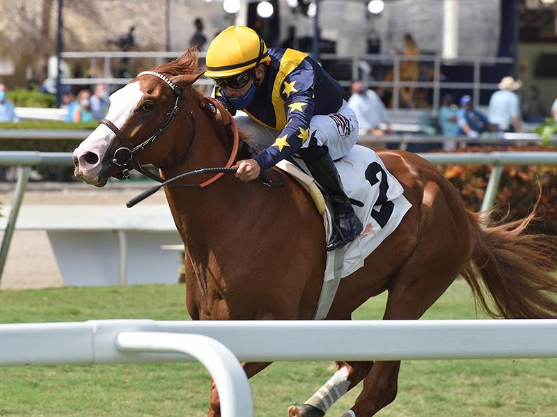 Annex rolls late to take $100,000 Palm Beach S. title=