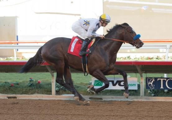 Constitution colt zips to TDN Rising Star status in Del Mar unveiling title=