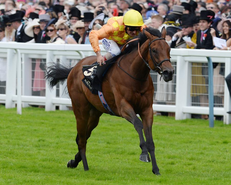 Distorted Humor filly take Group 3 Albany S. at Royal Ascot in stakes debut