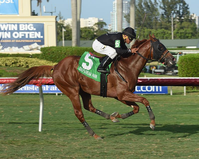 Gemonteer wins $100,000 Not Surprising S. in first stakes start title=