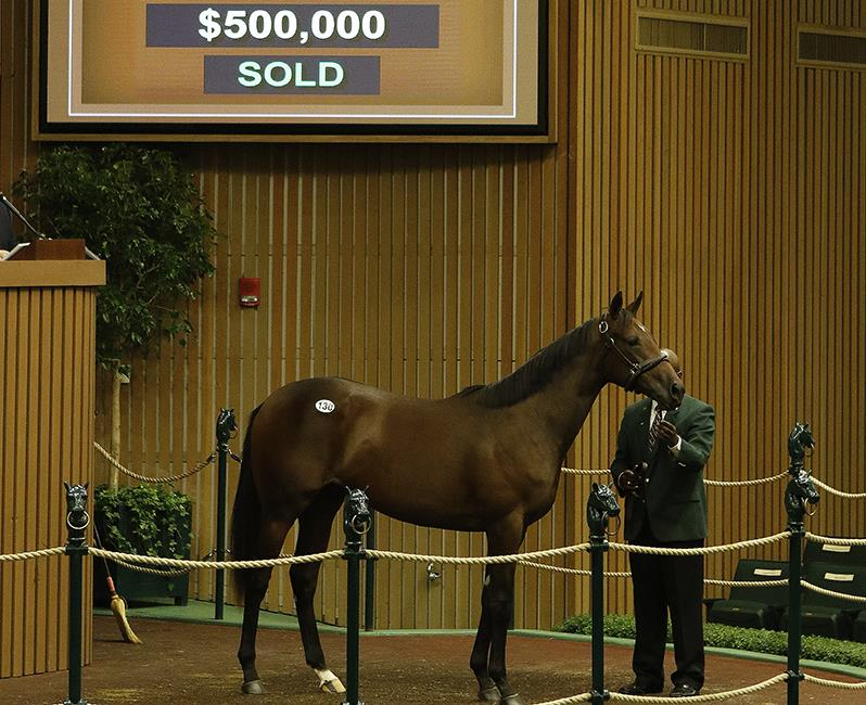 Keeneland September day 1 includes $500K Distorted Humor filly title=