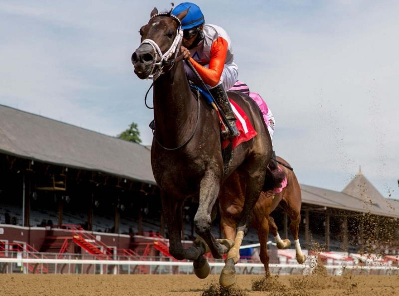 Nutsie wins Saratoga MdSpWt debut for Top-5 Freshman sire Exaggerator title=