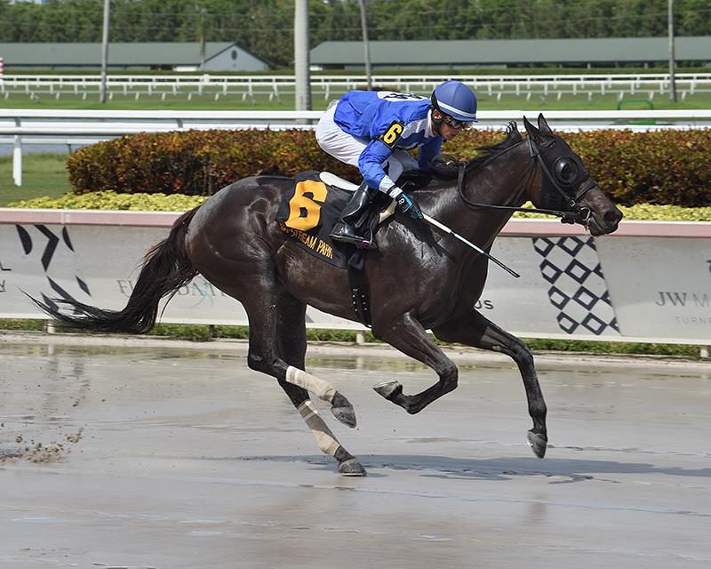 Fed Biz's Boerne collects first stakes win in Gulfstream's Azalea S. title=
