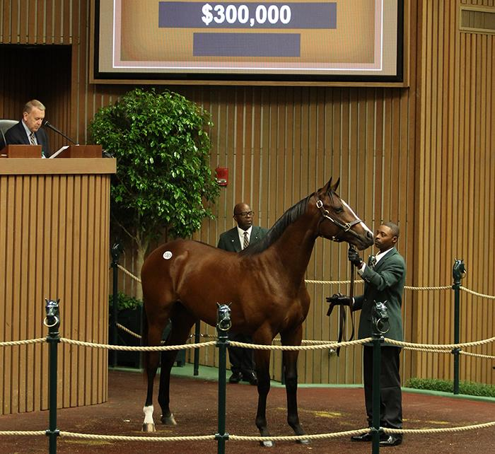$300,000 colt tops exceptional Saturday at Keeneland for Fed Biz title=