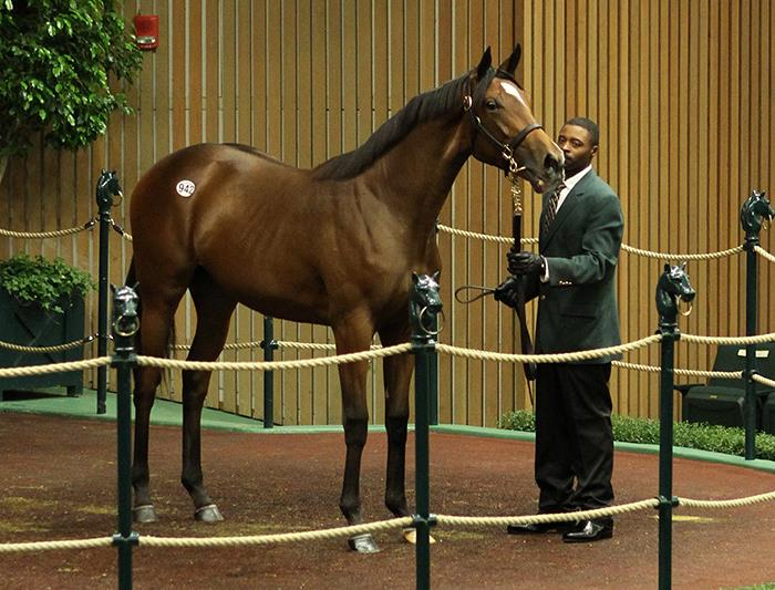 First Fed Biz Keeneland yearling hammers for $150,000 title=