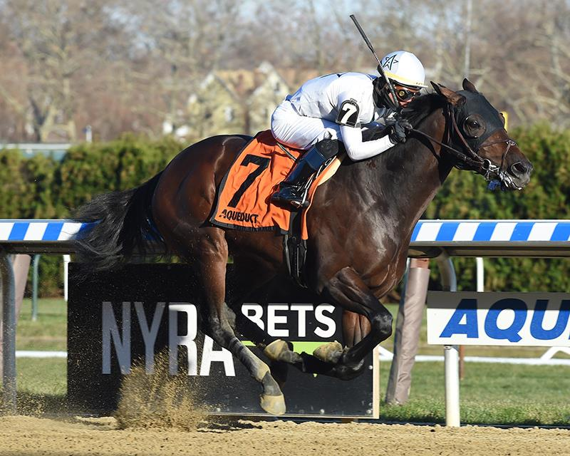 Distorted Humor 2YO wins Central Park S. in stakes debut title=