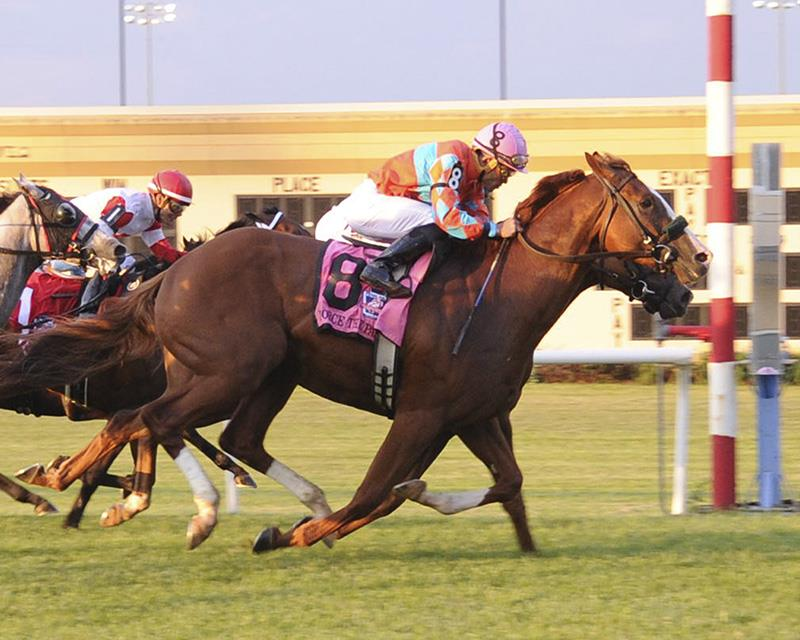 Force the Pass wins thriller in Grade 3 Penn Mile title=