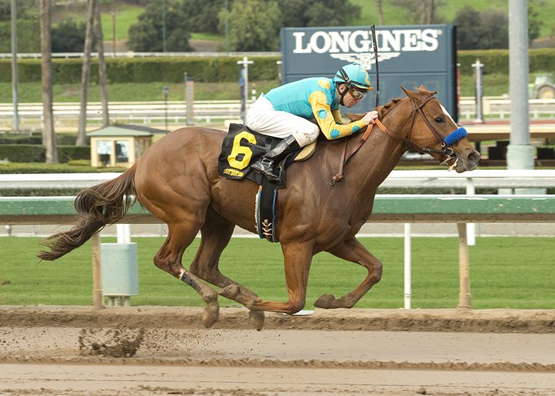 Gemologist colt scores at first asking at Santa Anita title=