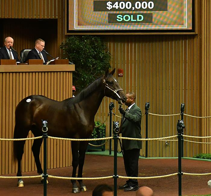 First Gemologist Keeneland Yearling sells for $420K title=