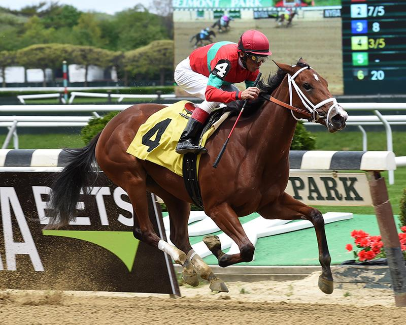 Gemologist filly debuts in fine fashion at Belmont title=