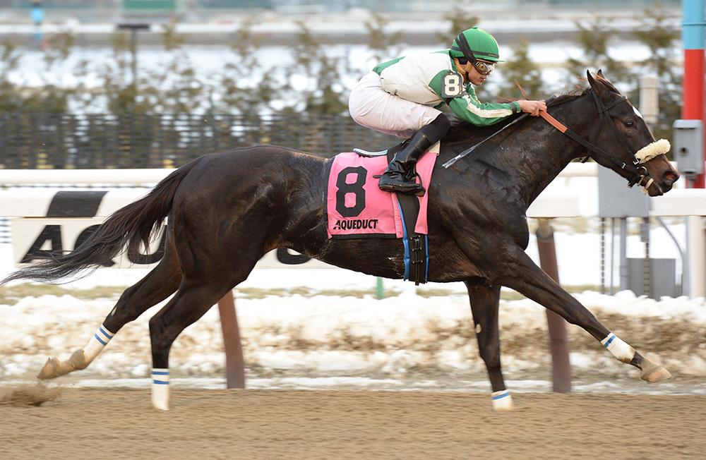 More Than Ready filly zips to first stakes win