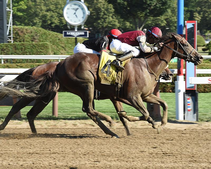 Thrilling Honorable Miss H. (G2) goes to Haveyougoneaway title=