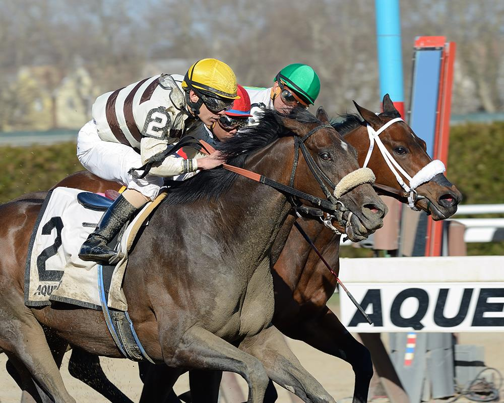 House Rules rallies to take Grade 3 Top Flight Handicap