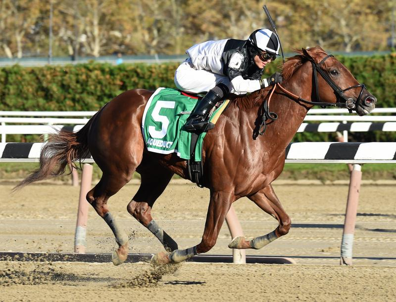 Congrats 2yo wins first stakes outing