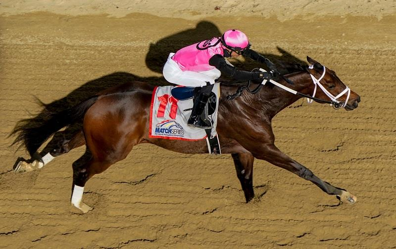 Congrats' Last Judgment goes gate-to-wire in Pimlico Special (G3) title=