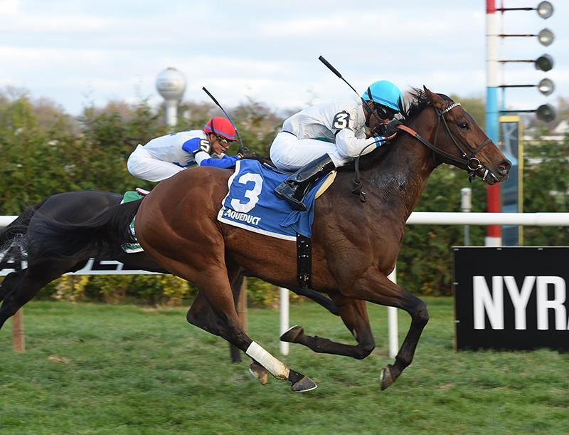 Artie Schiller's Macagone wins sire's namesake stakes title=