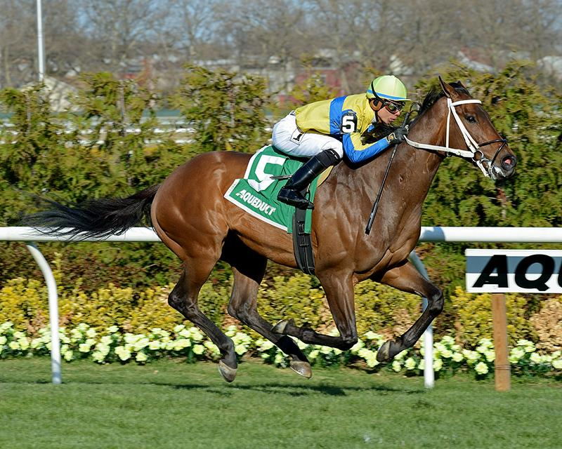 Macagone wires field in Danger's Hour S. title=