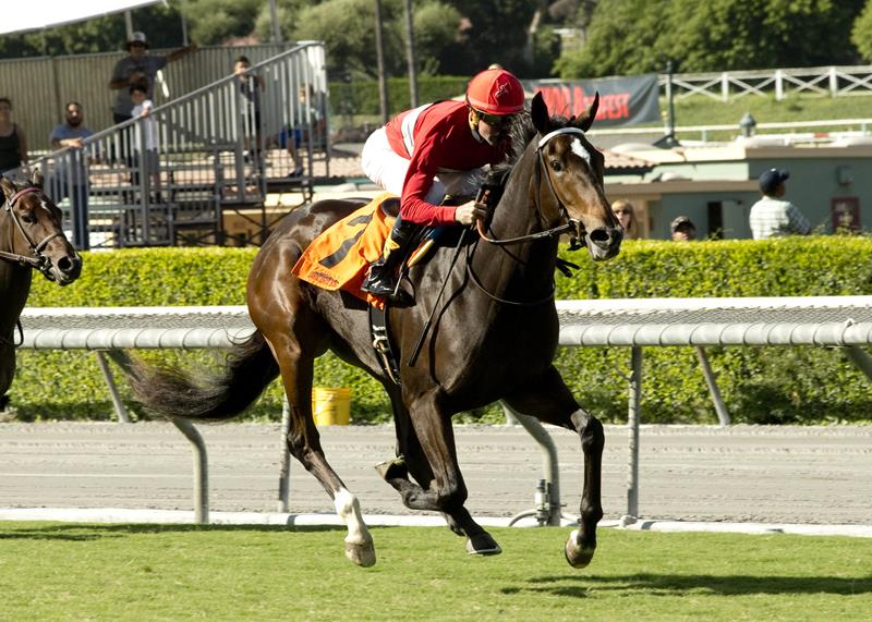 More Than Ready filly breaks through in Surfer Girl S. title=