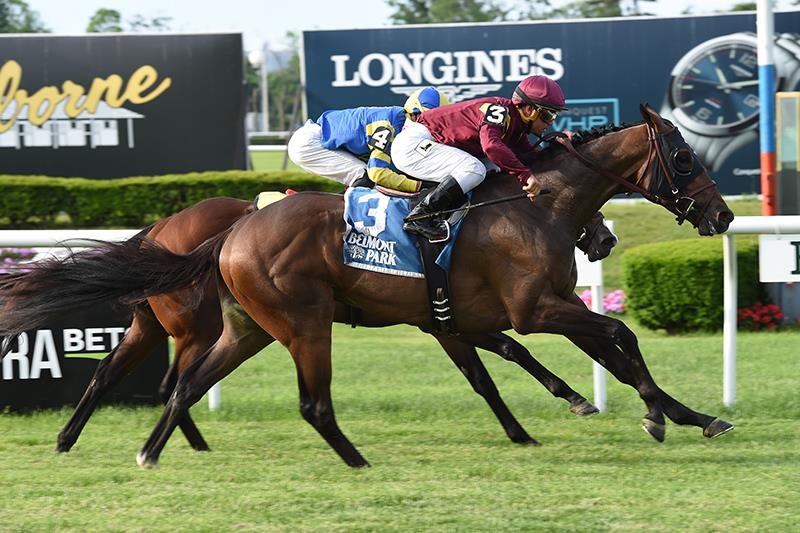 Gallant Catholic Boy prevails in Pennine Ridge S. (G3) title=
