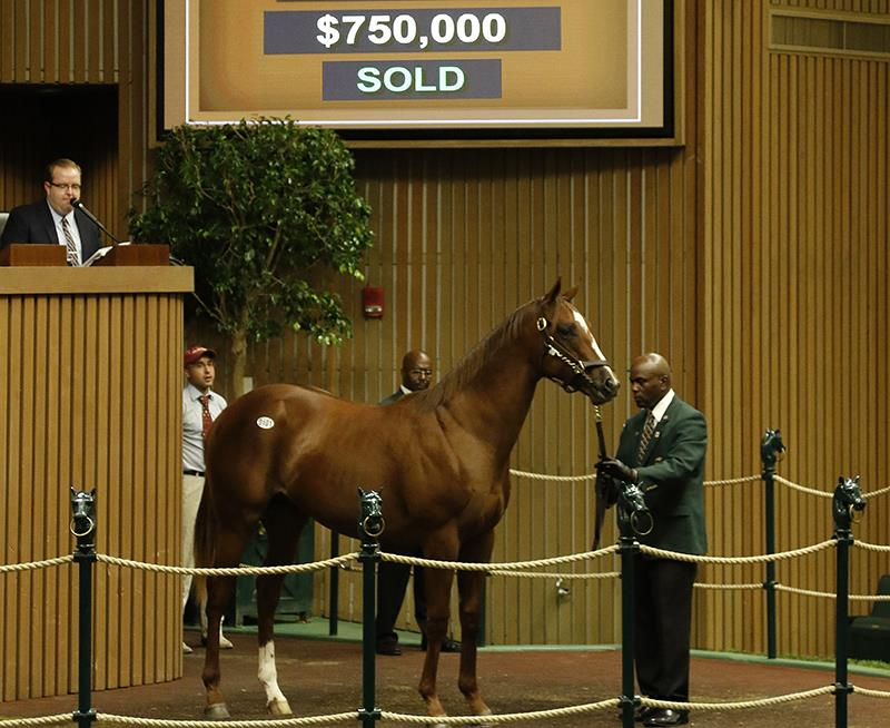 $750K colt tops spectacular Keeneland opener for More Than Ready title=