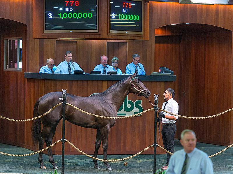 Seven-figure More Than Ready filly highlights Thursday OBS April sale title=