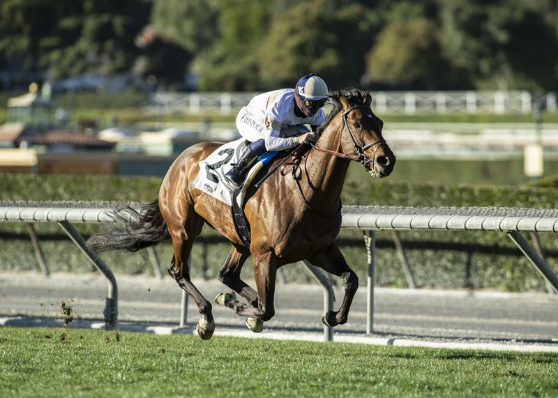 More Than Ready's Hit the Road rolls to first graded stakes win in Thunder Road S. (G3) title=