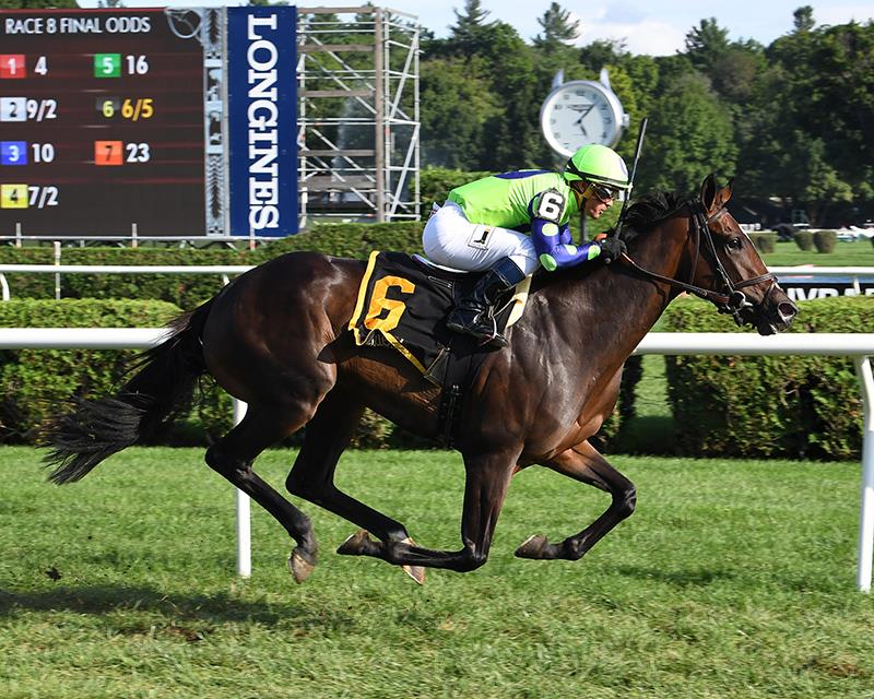 Rushing Fall becomes a millionaire with Lake Placid S. (G2) victory title=