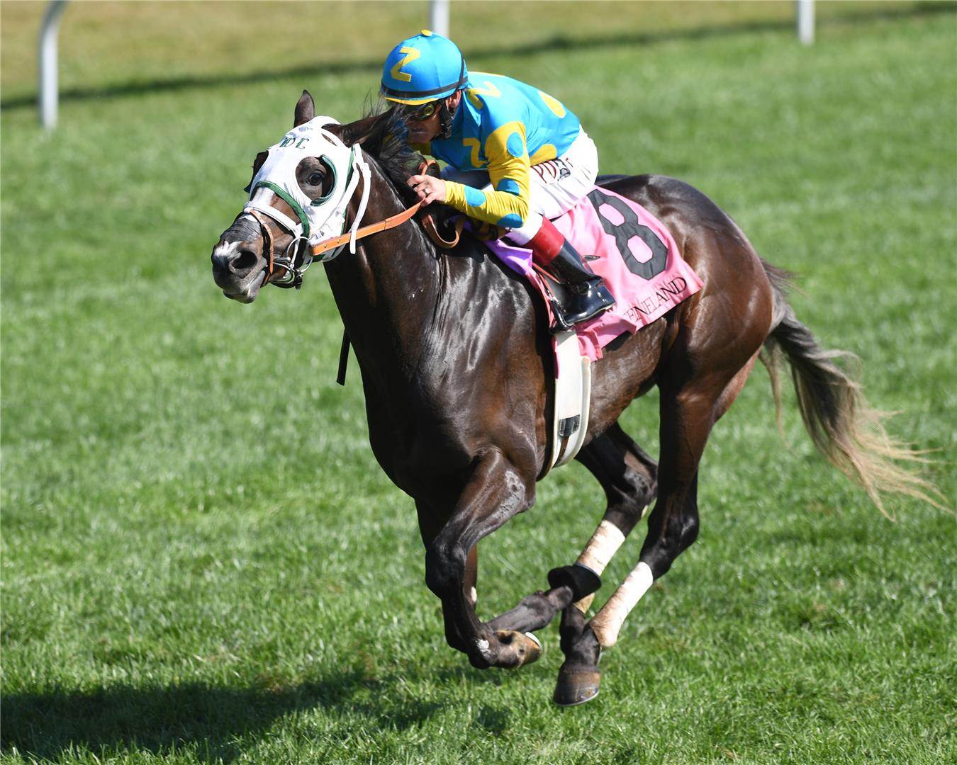 Nanoosh became Paynter's sixth first-crop winner on Friday