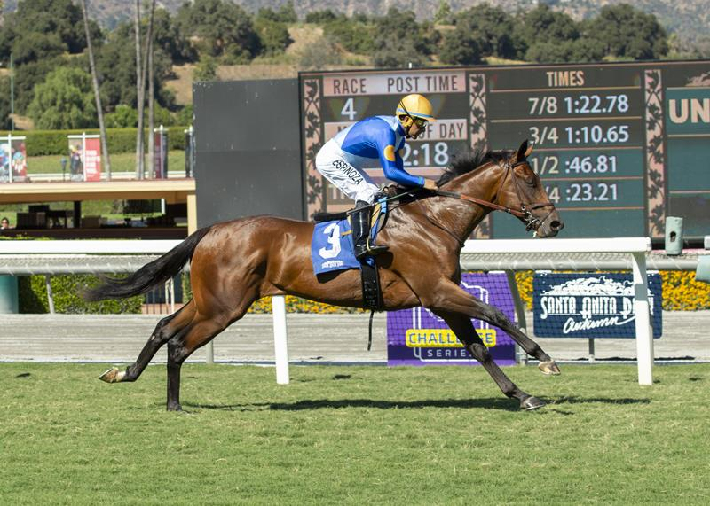 More Than Ready colt possible for Breeders' Cup after first stakes victory title=