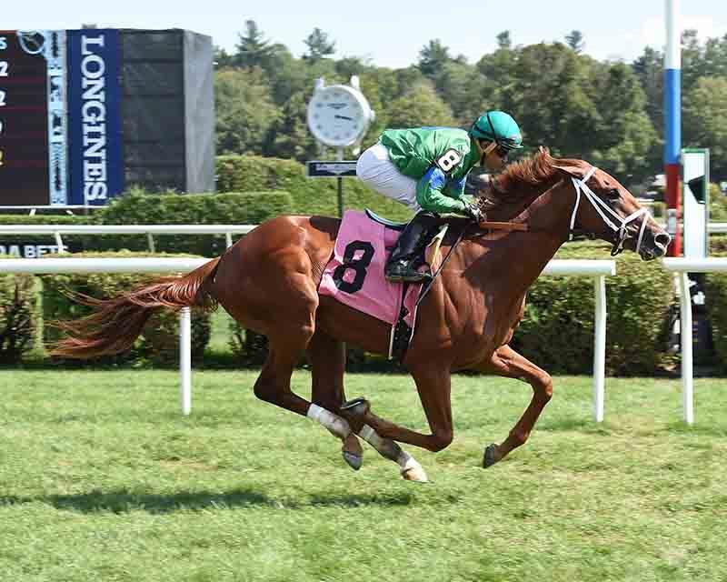 Overanalyze colt show dynamic turn of foot at Saratoga title=