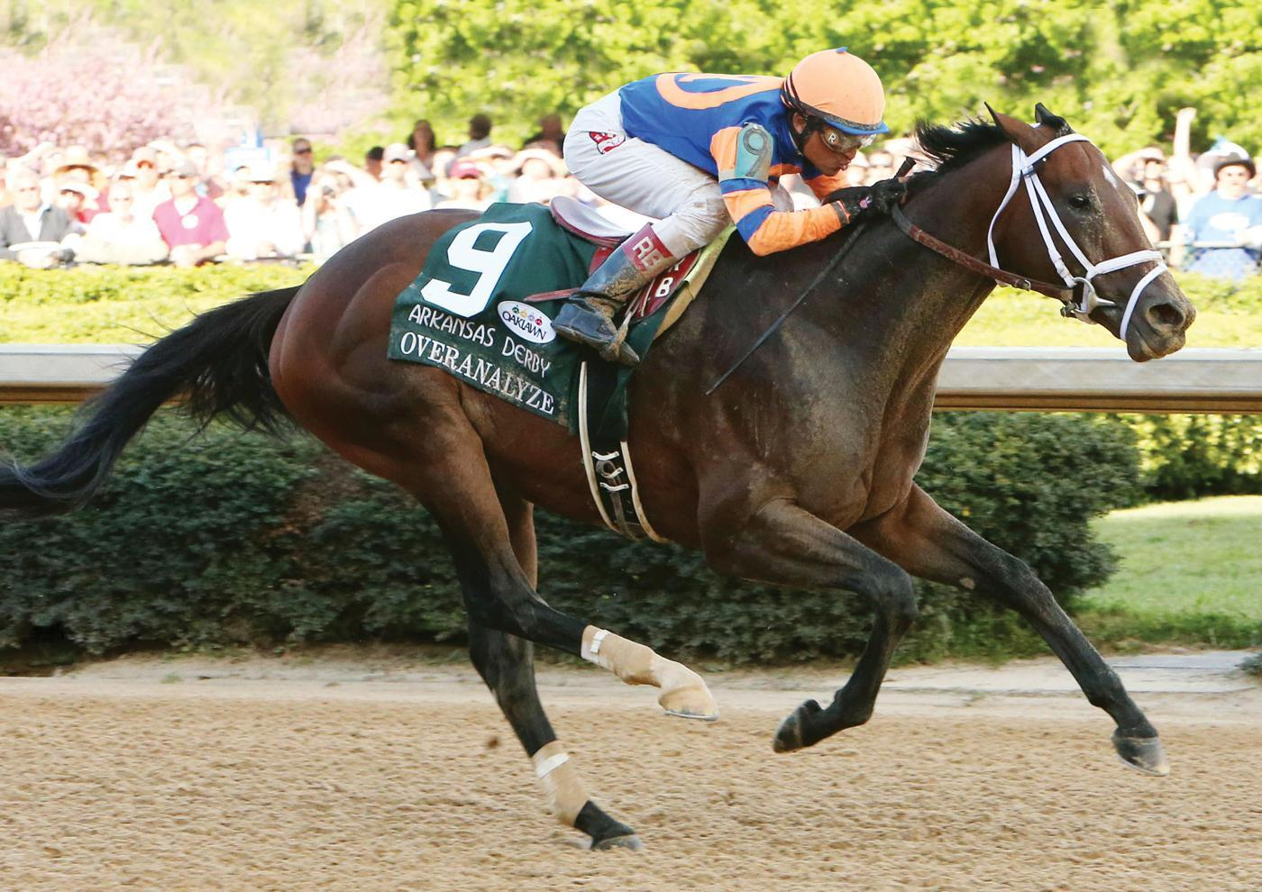 Overanalyze, G1-winning millionaire by Dixie Union, retires to WinStar