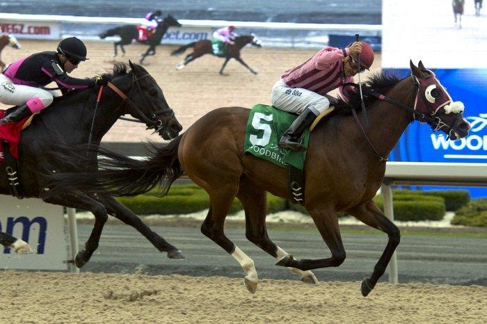 Passion for Action rallies for first graded stakes win title=