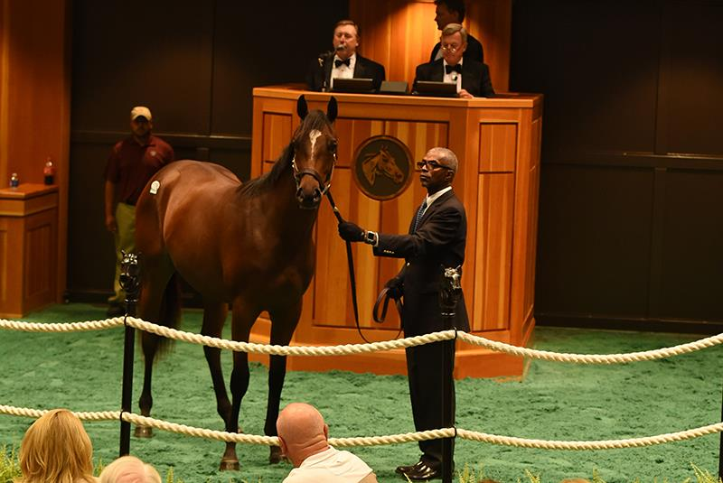 $335K filly tops F-T Saratoga sale for Paynter title=