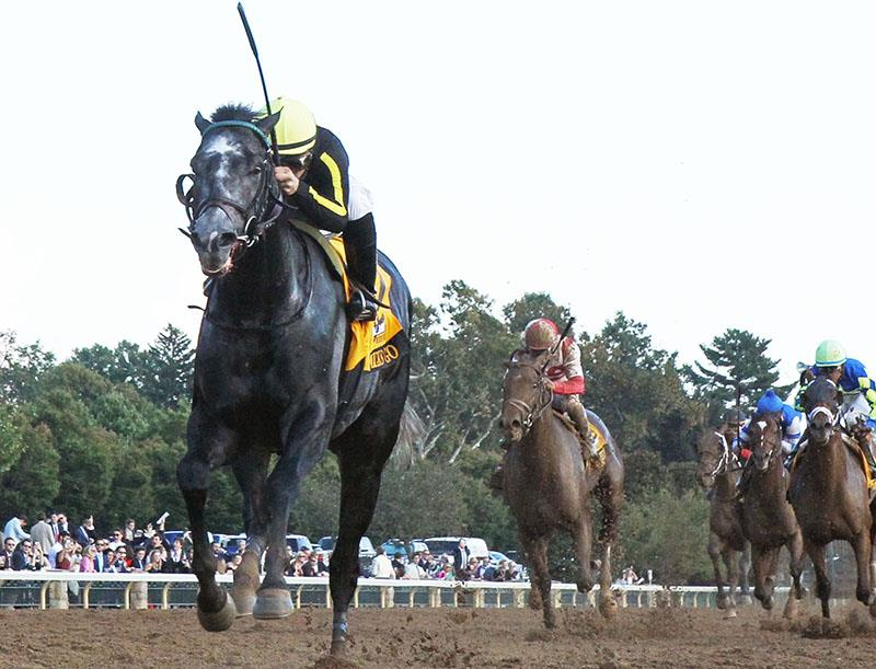 Paynter colt scores huge win in $500,000 Breeders' Futurity (G1) at Keeneland title=