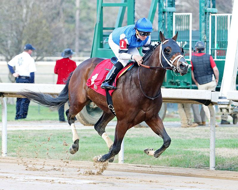 Classy Paynter colt shines in Oaklawn Park maiden score title=