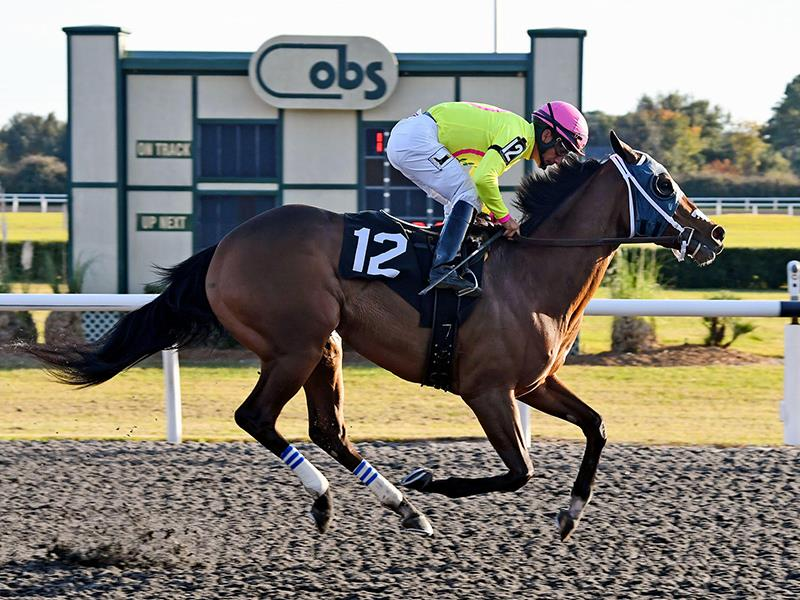 Paynter filly strikes first to take $125,000 OBS Filly & Mare Sprint S. title=
