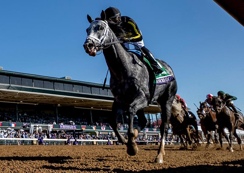 Paynter's Knicks Go sets track record in Breeders' Cup Dirt Mile (G1) title=