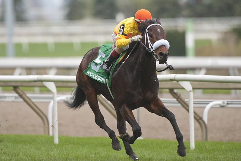 Paynter's Merveilleux wins third leg of Canadian Triple Tiara title=