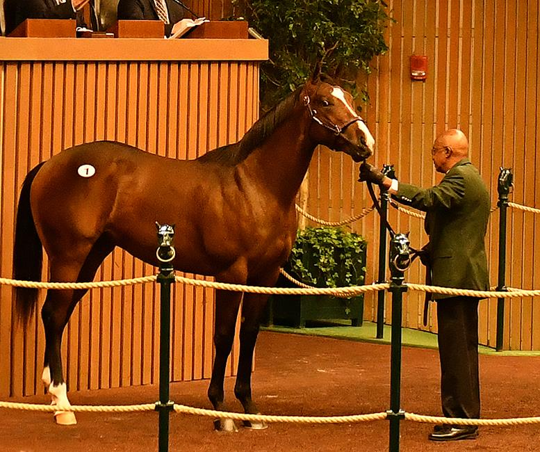 Pioneerof the Nile's $475K colt, hip No. 1, at the 2016 Keeneland Sept. Yearling sale