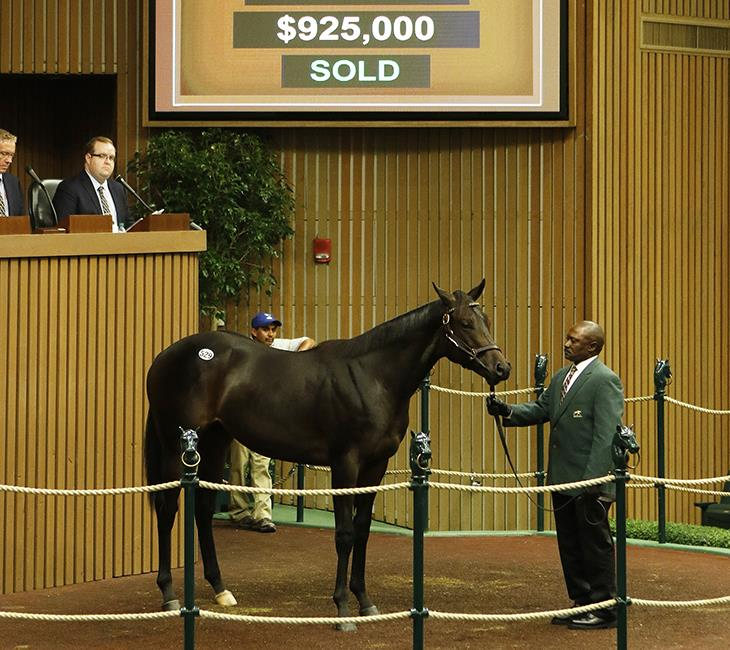 $925,000 Pioneer of the Nile colt during Keeneland Day 3 title=