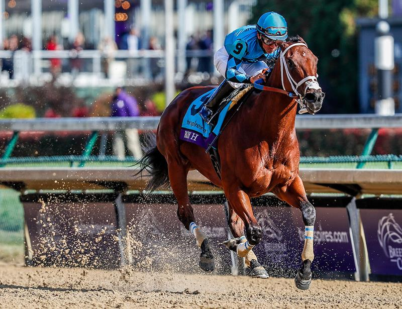 Roy H repeats in $2 million Breeders' Cup Sprint (G1) title=