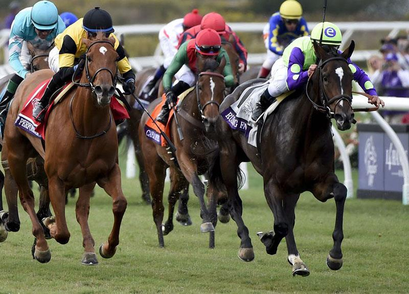 Rushing Fall completes perfect season in Breeders' Cup Juvenile Fillies Turf (G1) title=
