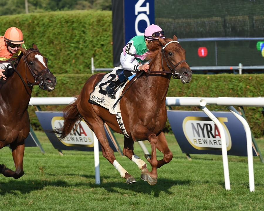 Seek Again sets course record in G2 Fourstardave