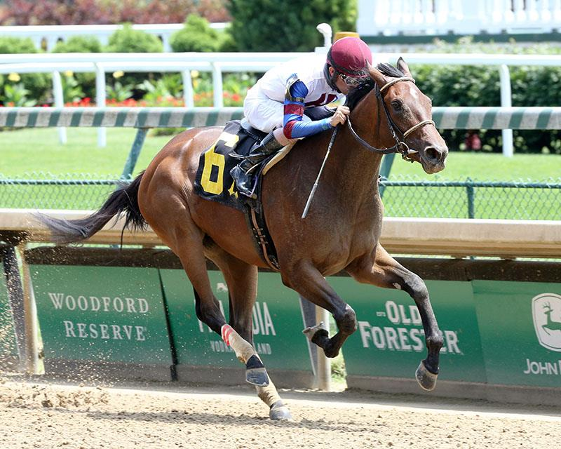 Speightster first-timer rallies to take Churchill Downs MdSpWt title=