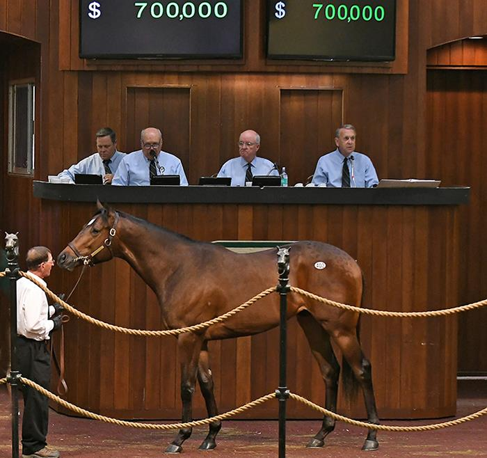 $700,000 Speightstown colt a star Wednesday at OBS 2yo Sale title=