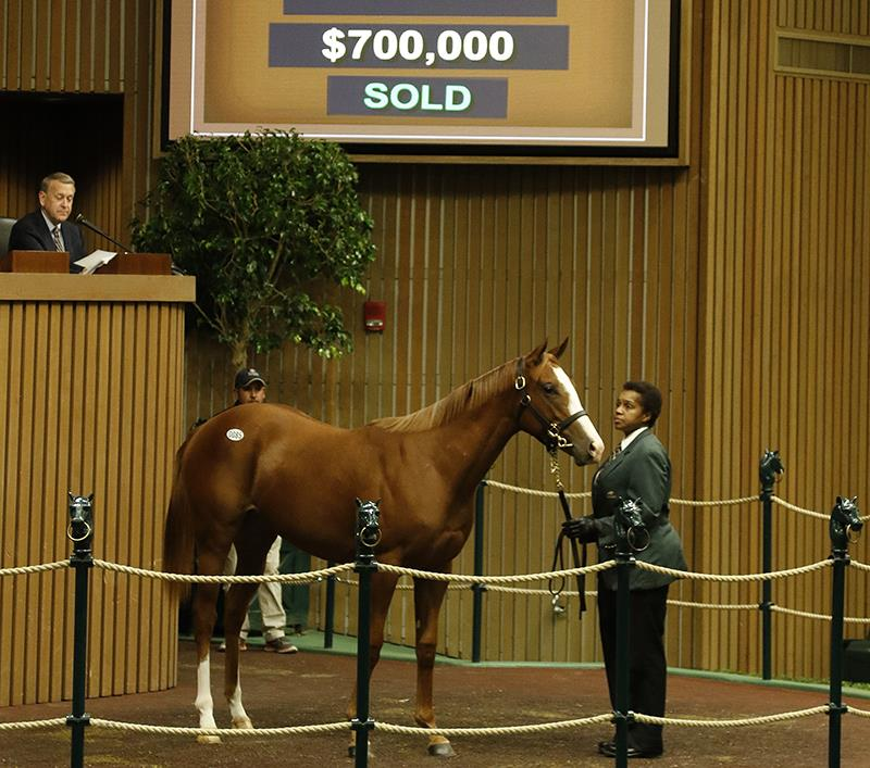 Speightstown yearlings topped by $700K filly at Keeneland title=