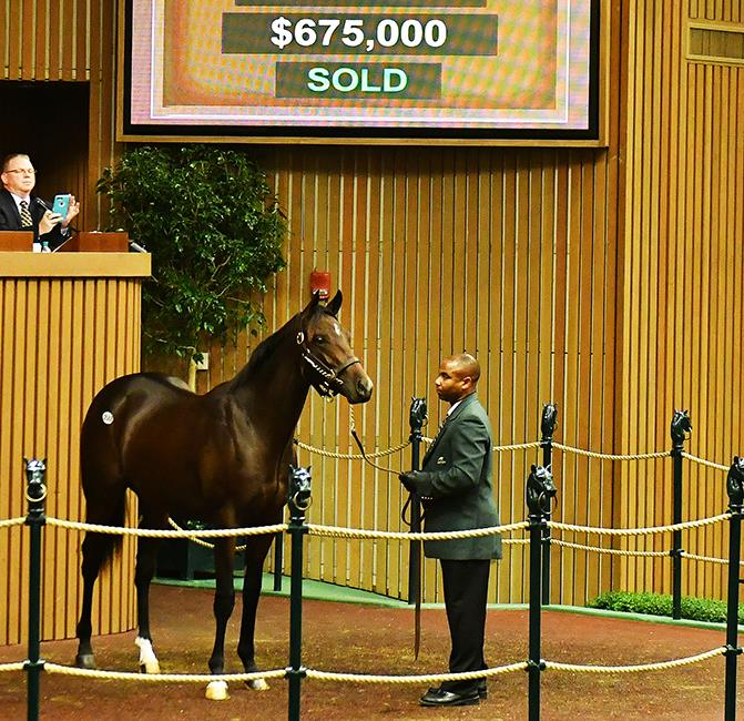$675K, $625K Speightstown colts Wednesday at Keeneland title=