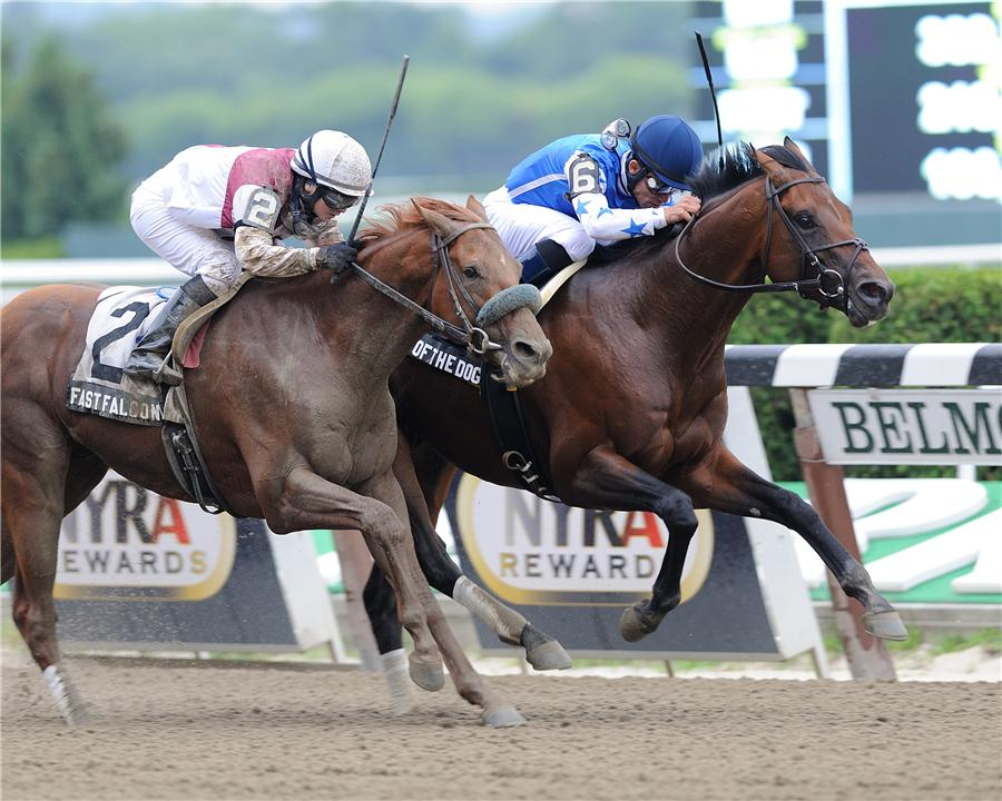 Teeth Of The Dog Grinds Out Victory G2 Dwyer Bluegrass