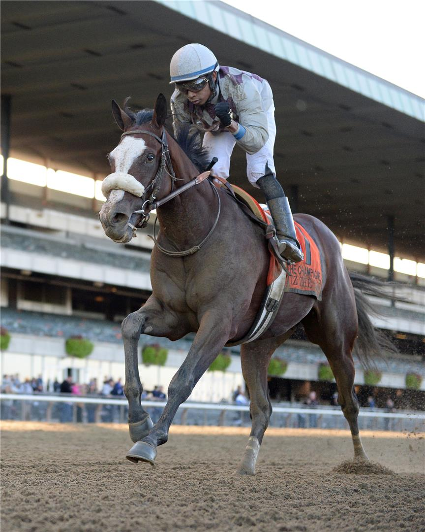 Tiz the Law dominant in convincing Champagne score title=